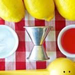 lemons-syrup-jigger-cropped